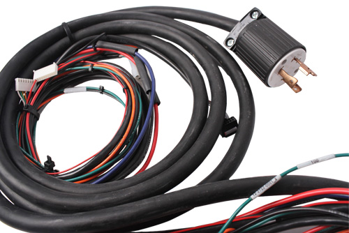 Potted Cable Harness with Automotive Connectors