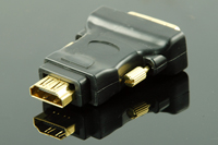 HDMI Male (19p) to DVI Female (24+1) Adapter, Gold Plated, Black